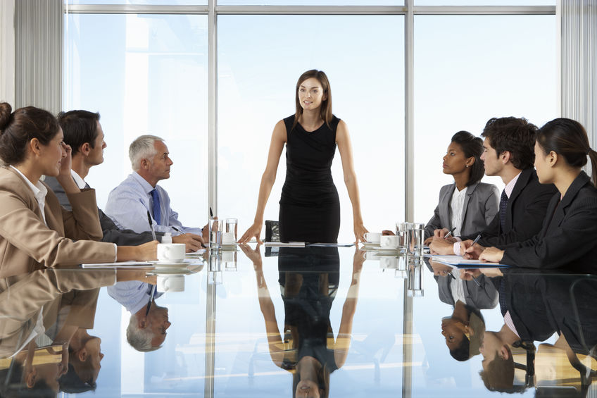 Chief Information Officer: Fortune 500 Female CIOs in 2016